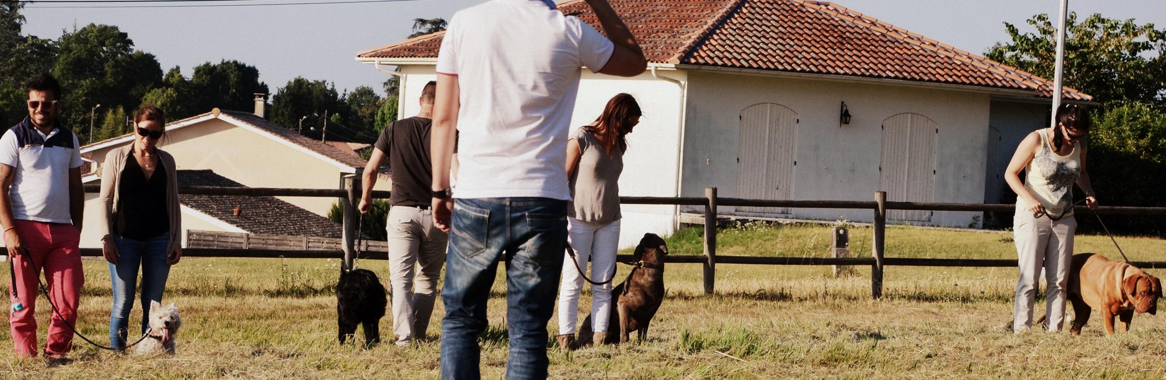Spécialiste Éducation et Fitness Canin à Domicile